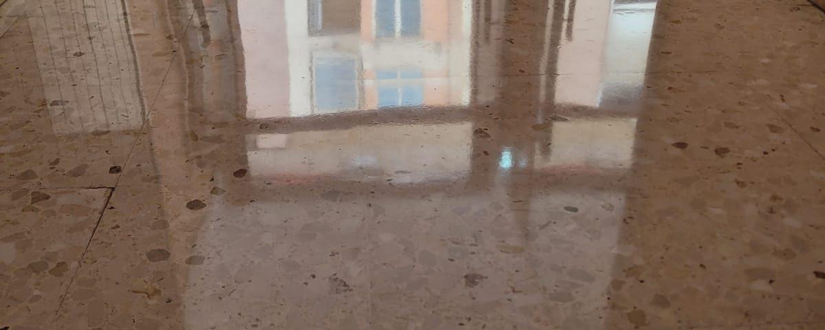 vitrificado suelo portales valencia